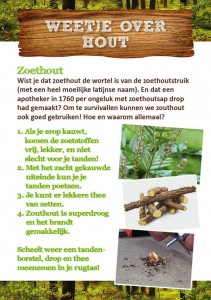 Weetje over hout