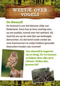 Weetje over vogels